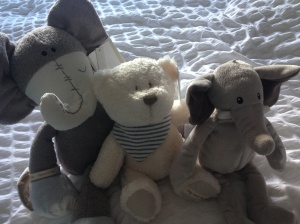We love these! L-R Elephant and Bear from Mammas and Pappas from Aunty Sioned, Smaller Elephant from Mamgu (Welsh nan!) at Marks and Spencers