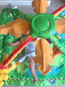 Hiding in the fisherprice jungle play gym!