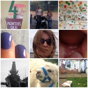 4 months old... a visit to Cardiff Bay.... new sleepsuits from Next.... manicured nails... windswept by the sea... 2 teeth!.. HMS Destroyer.. a llama at St Fagans food festival... and a garden scene!