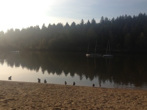 early morning walk down at the lake, Center Parcs