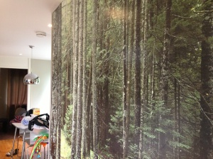 I love this wall in the chalet at Center Parcs!