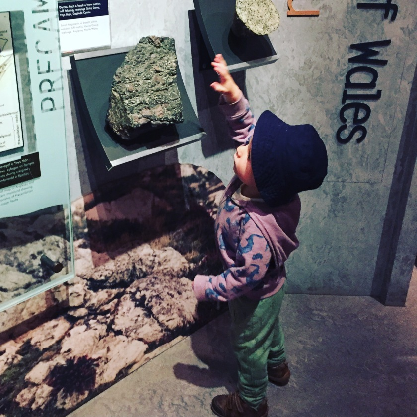cardiff museum rocks