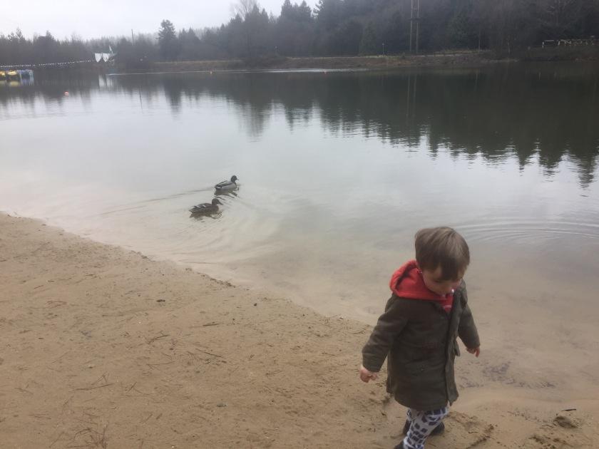 The lake at Center parcs longleat